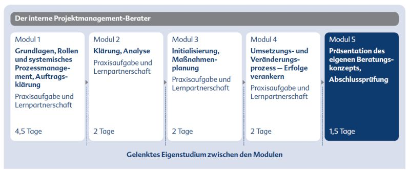 Interner_Projektmanagementberater_Grafik_1