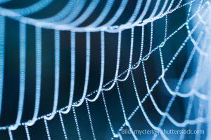 Spinn dir dein Netz: Kernkompetenz Networking