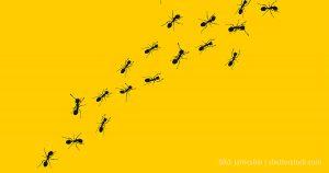 Crowdsourcing und Outsourcing von Routineaufgaben an Clickworker