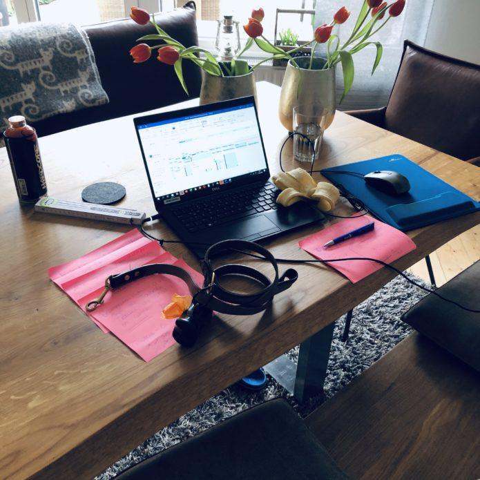 Vom Leben (und Überleben) im Homeoffice